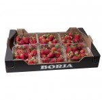 caja_6_envases_fresas