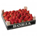 Caja 2kg Borja